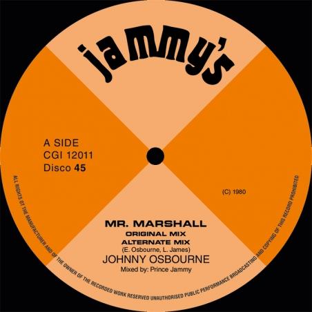 """(12"""") JOHNNY OSBOURNE - MR..."""