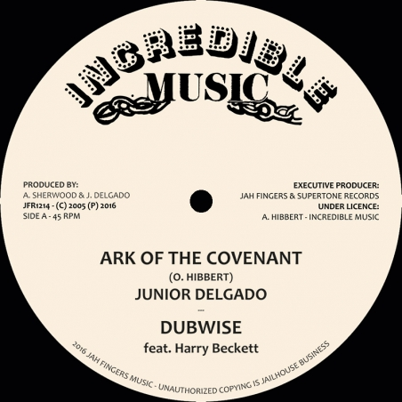 "(12"") JUNIOR DELGADO - ARK..."