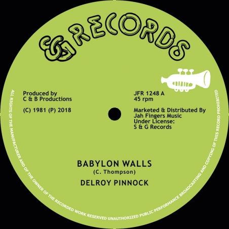 "(12"") DELROY PINNOCK -..."